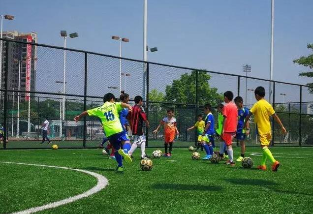 助力體育公益Manbetx萬博平臺 創造體育公益新時代